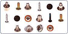 Assortment of Screws